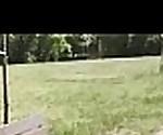 (ani blackfox) Lovely Euro Girl Get Sluty And Bang Outdoor  video-04