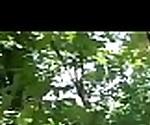 Euro Sexy Teen Girl (alana moon) Like Hardcore Sex Outdoor video-02