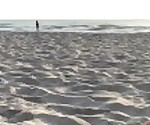 Real Amateur Public Anal Sex Risky on the Beach !!! People walking near...