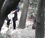 Forrest SPY CAM NEW
