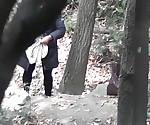 Форрест шпионские камеры новый